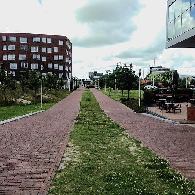 Groene promenade 2016